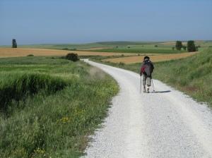 photo_walking theCamino1